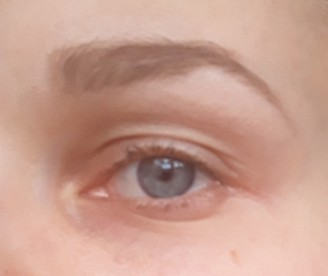 Brows with fleur the force brow powder side